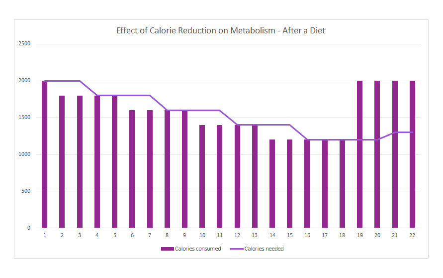 Effect of Calorie Reduction on Metabolism, what happens after a diet