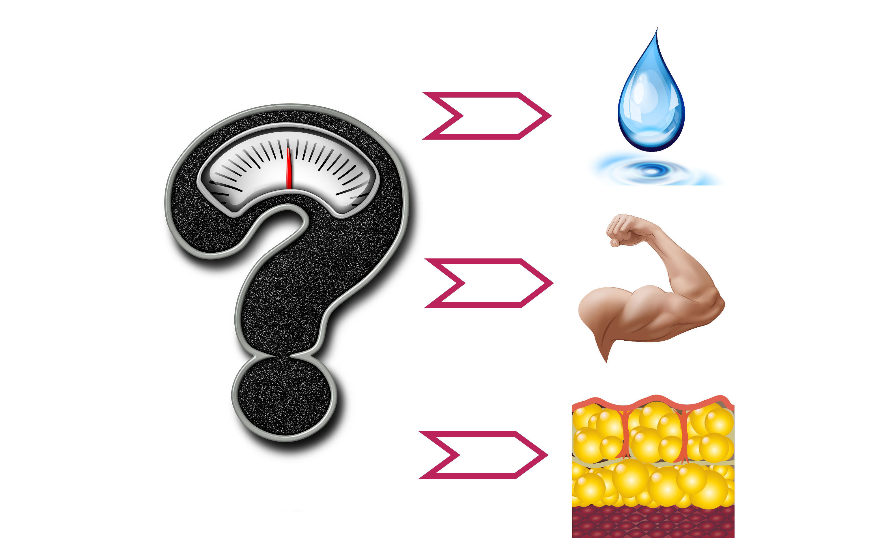 Weight Loss vs Fat Loss - what is weight loss?